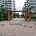 Pusztuló lakópark, avagy luxustól a gazig