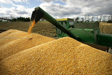 corn-tractor.jpg