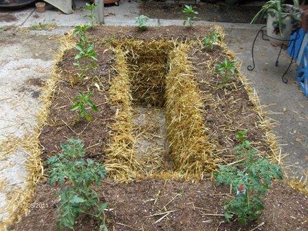 straw garden 001.jpg