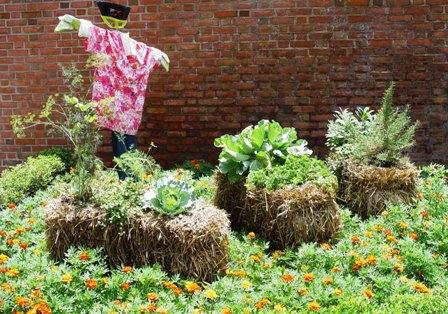 strawbale garden eg1.jpg