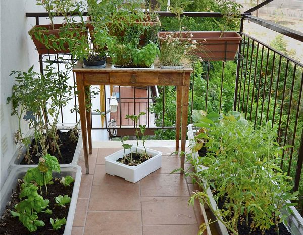 balcony-vertical-garden-9_mini.jpg