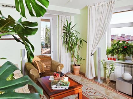 Passz v doh nyos n v nyek megyeri szabolcs kert sz blogja for Jardines colgantes para interiores