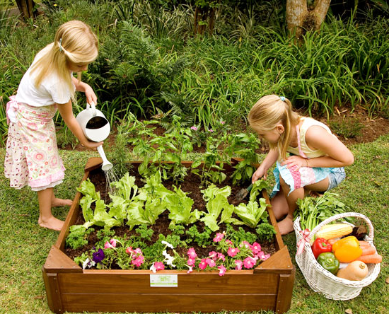 just-for-kids_veggie-garden-box_gardening.png