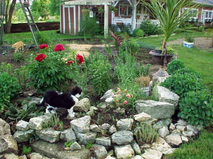56279ba32c3e58c7177ee5df8ea6f248--rock-garden-design-garden-design-ideas.jpg