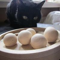 Ajándék intelligens macskáknak