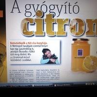 Sajtó: METROPOL 2013.03.22.