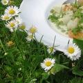 Nagyon-tavasz-főzelék