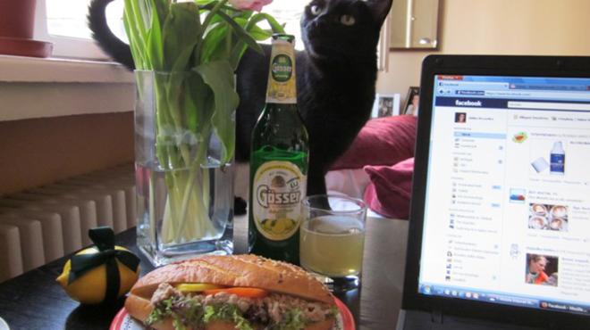 Délutáni csendélet, macskával
