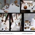ART&FASHION : ORANGE OPTIKA & THEARTILIVEIN PROJEKTEK 2015-16