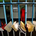 Földalatti Diákszervezet – A Berkeley Egyetemen volt elítélt hallgatók építenek utat a börtönből az iskolába