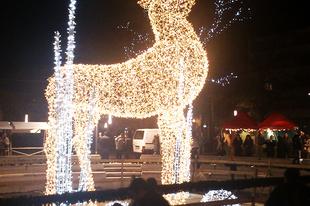 2013 karácsonya Szegeden /áthozott/