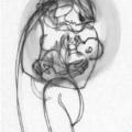 ANYATEJ, SZOPTATÁS – miért, mikor, hogyan? III. A szoptatás
