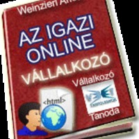 Az igazi online vállalkozó-letölthető 10 oldalas ingyenes tanulmány!!!