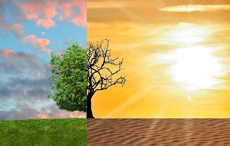 klimavaltozas_foto_pixabay_com_tumisu.jpg