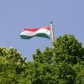 Egy kis nosztalgia, a 2011-es magyarországi kockázati tőkebefektetések summázata