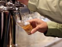 Minőségi csapolt sör program