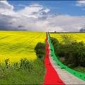 Magyar út