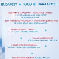 az újabb magyar nanocsoda