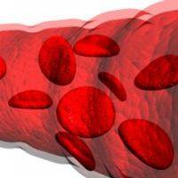 vércsoportdiéta