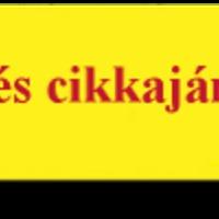 Cikkajánló: Otthon felújítás, lakásfelújítás Budapesten és környékén