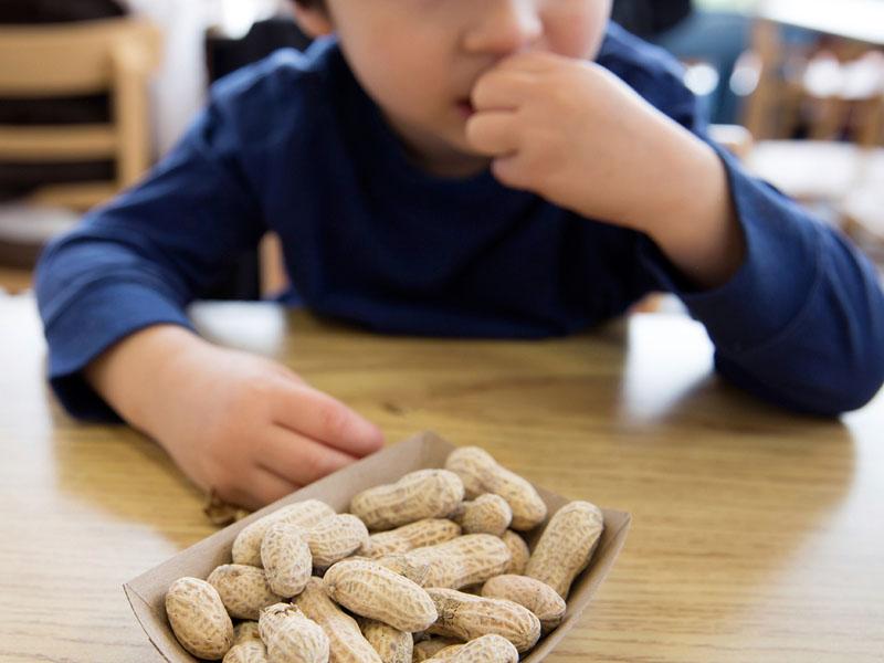 Ételallergia-ételintolerancia - Ön tisztában van a különbséggel?