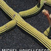 Houellebecq: A gyönyör miatt elveszítjük a józanságunkat