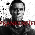 Szegény Frankenstein