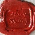 Unalmában kattintott, kiadatlan Mary Shelley leveleket fedezett fel