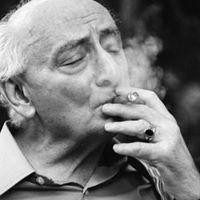 100 éves lenne Vas István