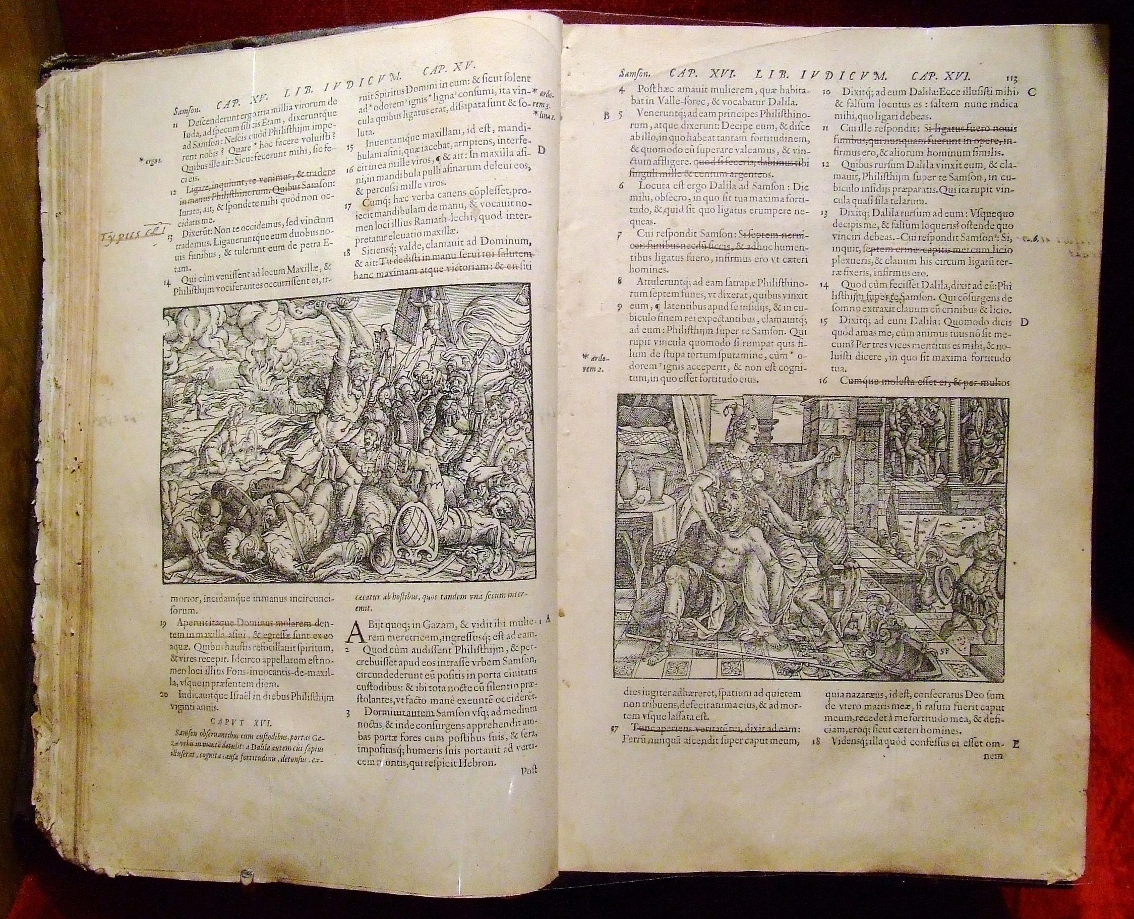 latin_biblia.JPG