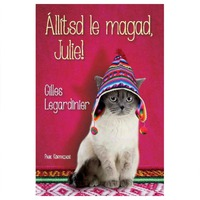 Gilles Legardinier: Állítsd le magad, Julie!