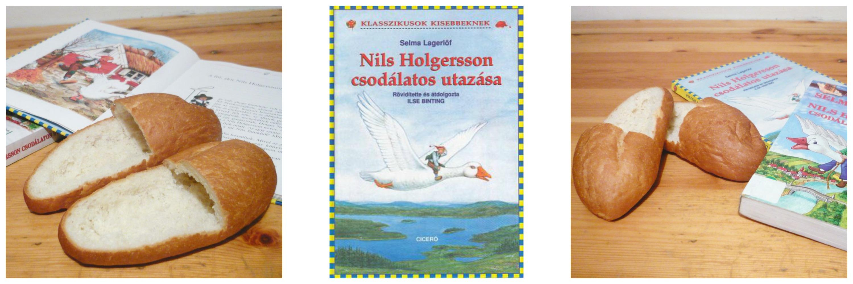 nils_holgersson_csodalatos_utazasa.jpg