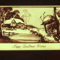 Bolondos Karácsonyt!