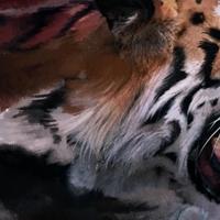Jártak-e emberevő tigrisek Szöulban?