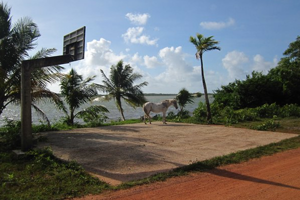 belize-basketball-court.png