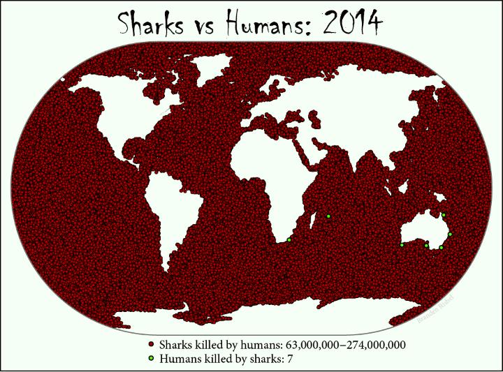 sharkmap.png