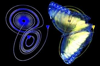 lepkezis-pillangohatas.jpg