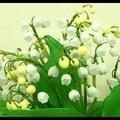 Gyöngyvirág készítése