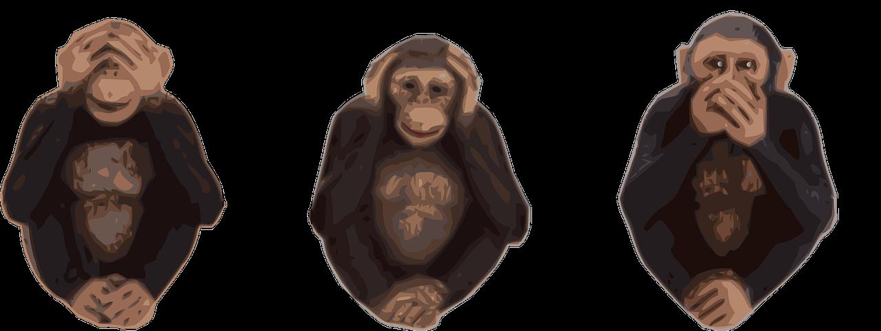 monkeys-47226_1280.png