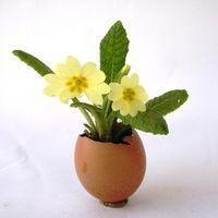 Tavaszi virágok tojáshéj cserépben