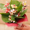 Gumicukor virágcsokor
