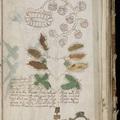 A tíz legrejtélyesebb kódolt könyv