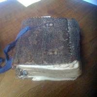 A világ harmadik legrejtélyesebb könyve Magyarországon van