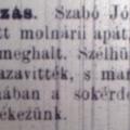 276. Szabó József apátplébános portréja