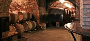 Villányi bor- és gasztrotúra gluténérzékenyként