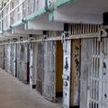 Pátkai Marcell Börtönkórház című sorozatterve is versenyez a 20 000 dolláros díjért