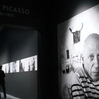 Picasso - Alakváltozások 1895-1972