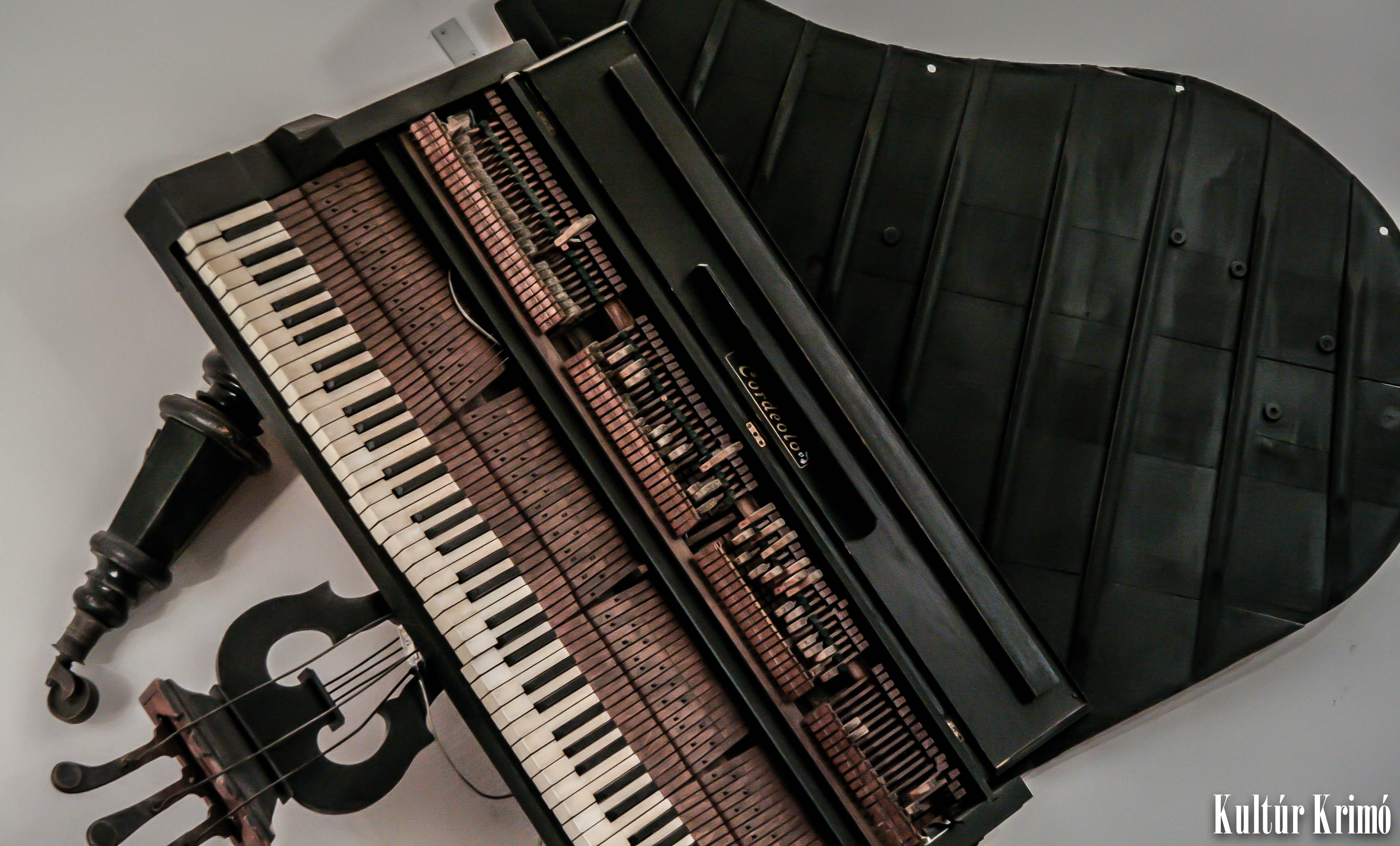 Muzikum