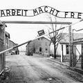 Lágerutazás: Holländer Margit feljegyzései a vészkorszakról és az újrakezdésről (1945-1946)