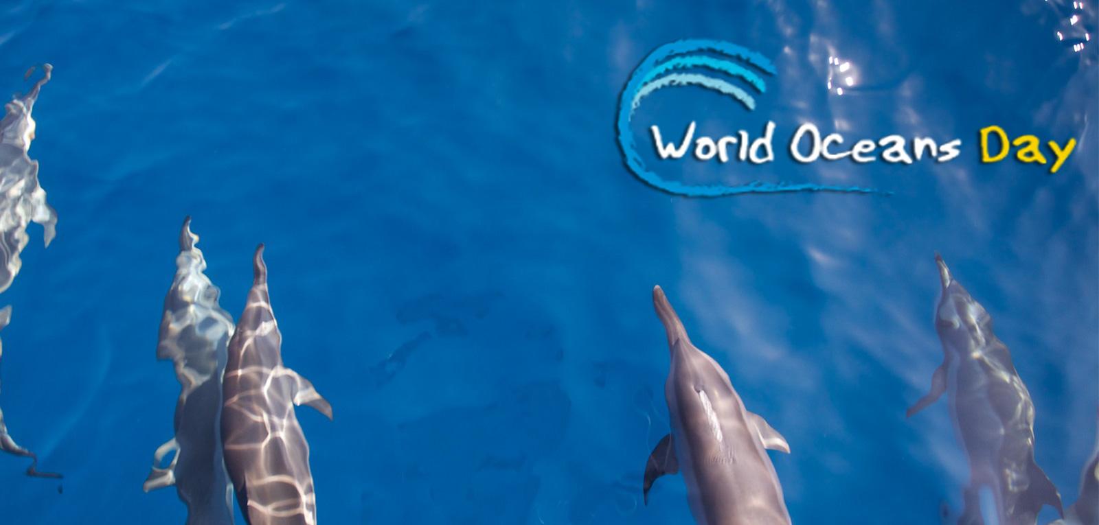 world-oceans-day-wallpaper.jpg